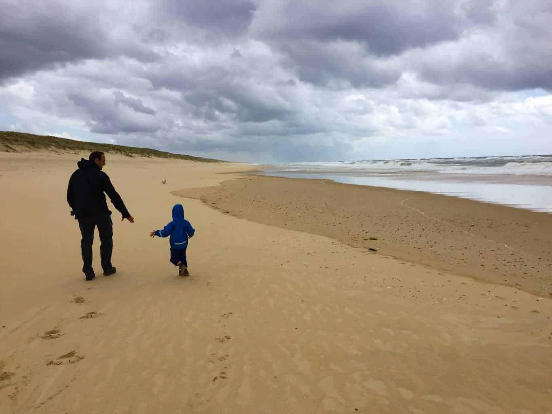 l'Especier plage, mimizan. landes beaches