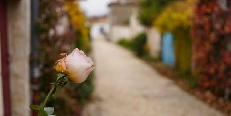 Les Plus Beaux Villages de France, Talmont-sur-Gironde