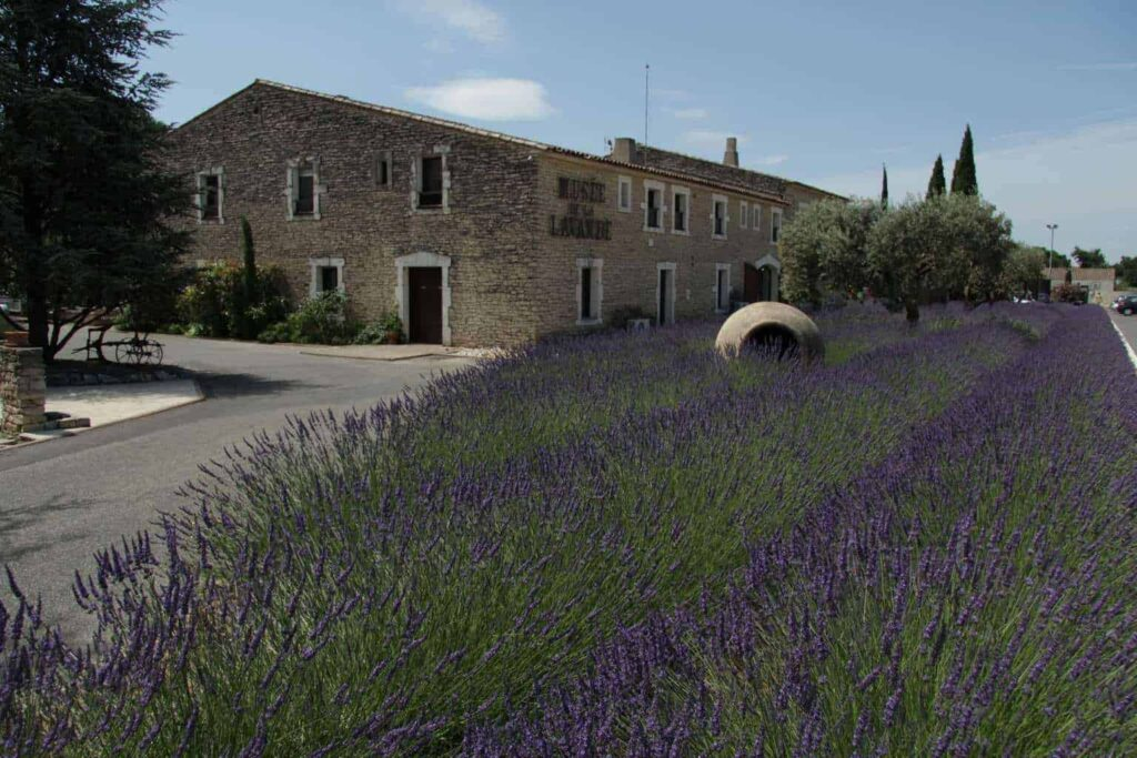 Musee de la Lavande. Lavender Museum in Provence, France
