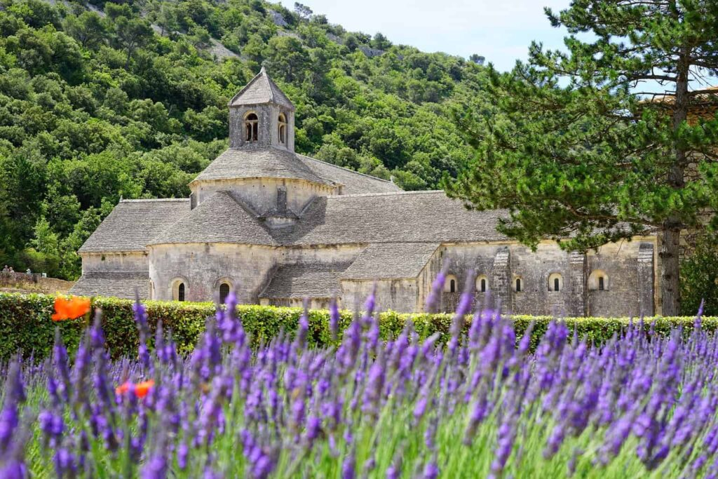 Sénanque Abbey is an excellent stop on your Luberon tour.