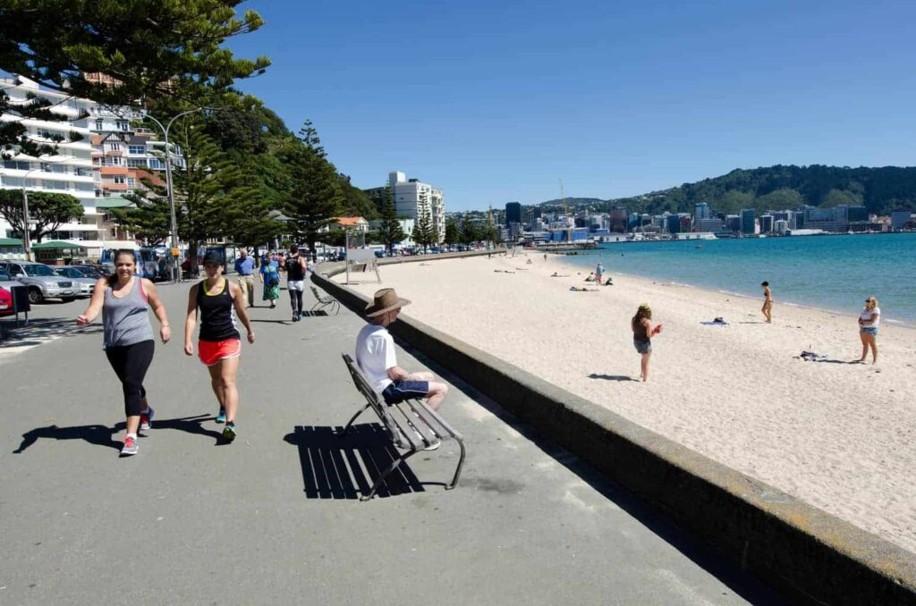 Oriental Bay in Wellington can't be bet on a good day.