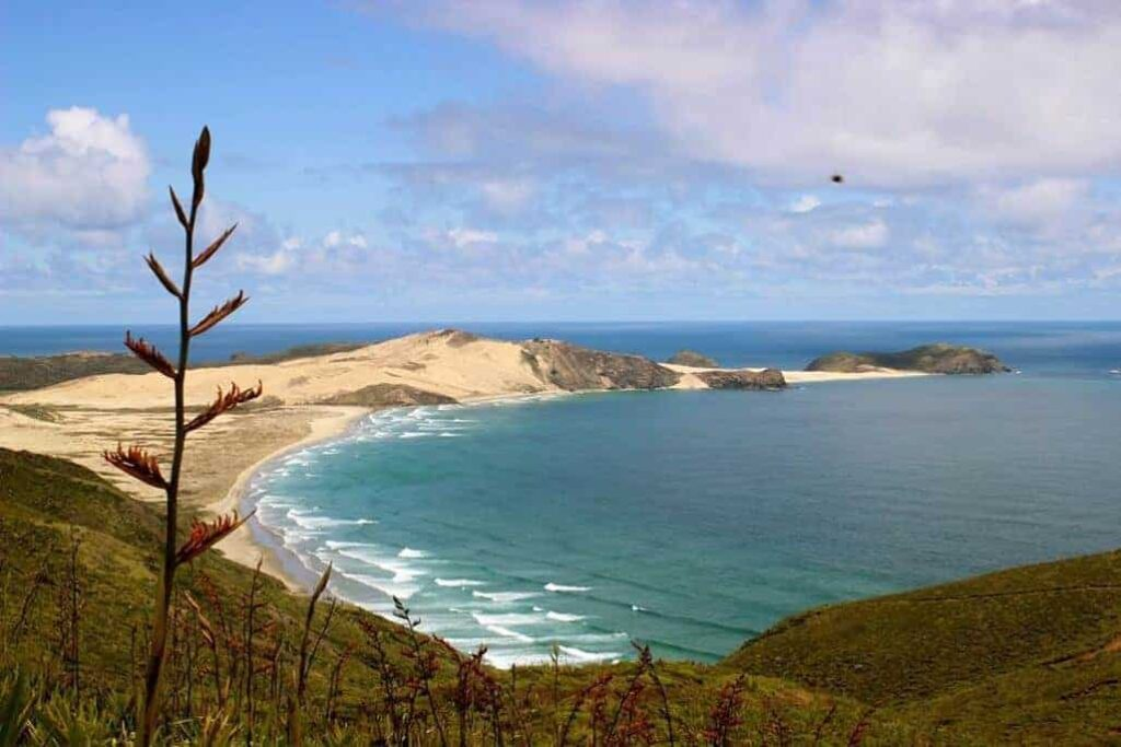 Te Werahi Beach is one of New Zealand's best beaches