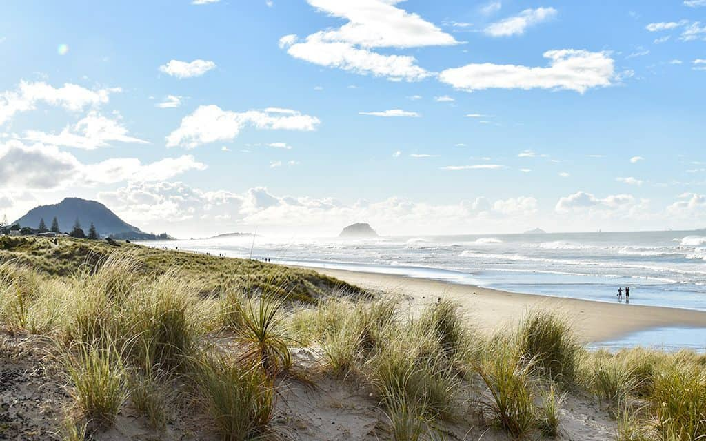 New Zealand's best beaches.