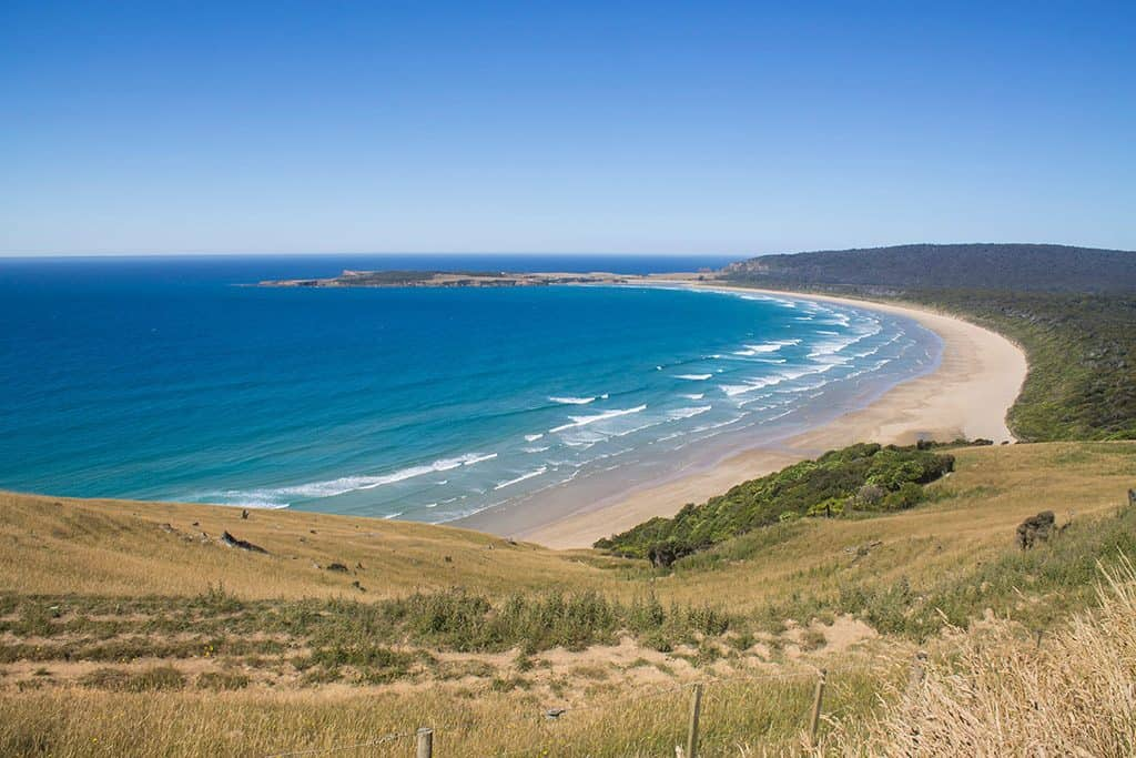 Tautuku Bay is one of the best beaches in New Zealand