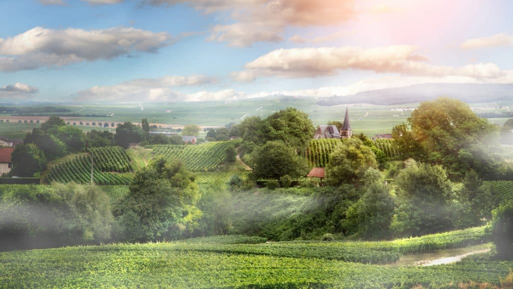 The Champagne region is one of the best places to visit in France.